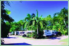 Tropical Hibiscus Caravan Park - Accommodation Gold Coast