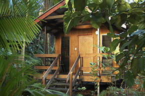 Cape Trib Beach House - Accommodation Gold Coast