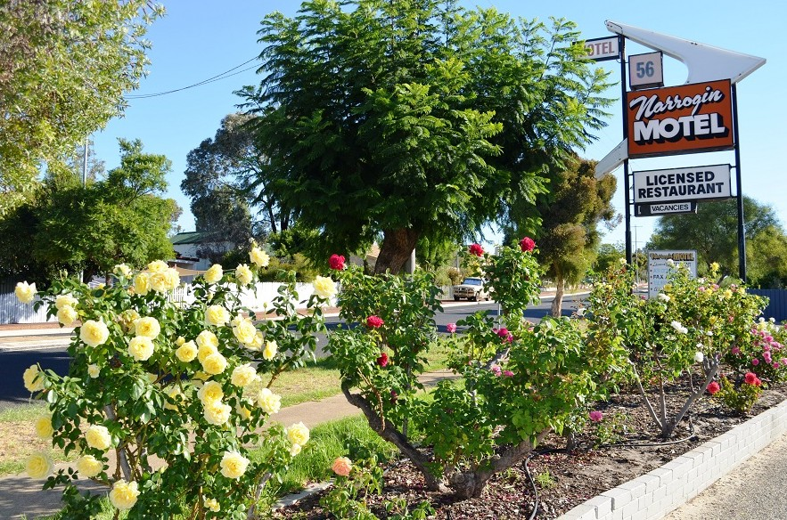 Narrogin Motel - Accommodation Gold Coast