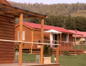 Maydena Country Cabins Accommodation  Alpaca Stud - Accommodation Gold Coast