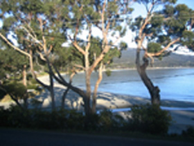 Bruny Island Retreat - Accommodation Gold Coast
