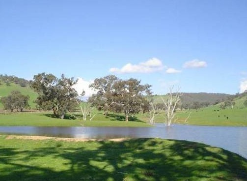 Hillview Farmstay - Accommodation Gold Coast