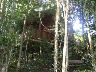 Adjinbilly Rainforest Retreat Cabins - Accommodation Gold Coast