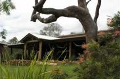 The Hollow Log Country Retreat - Accommodation Gold Coast