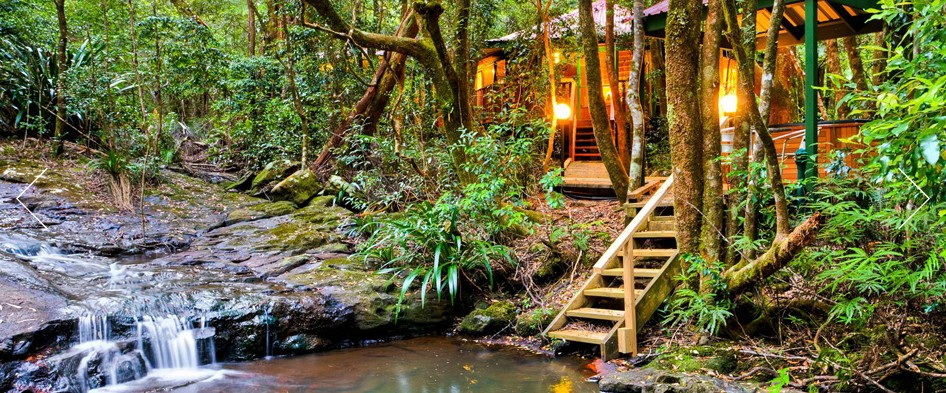 The Mouses House - Rainforest Retreat - Accommodation Gold Coast