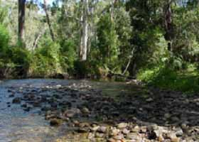 River Rest Country Cottage - Accommodation Gold Coast