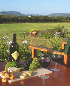 Tranquil Vale Vineyard Cottages - Accommodation Gold Coast