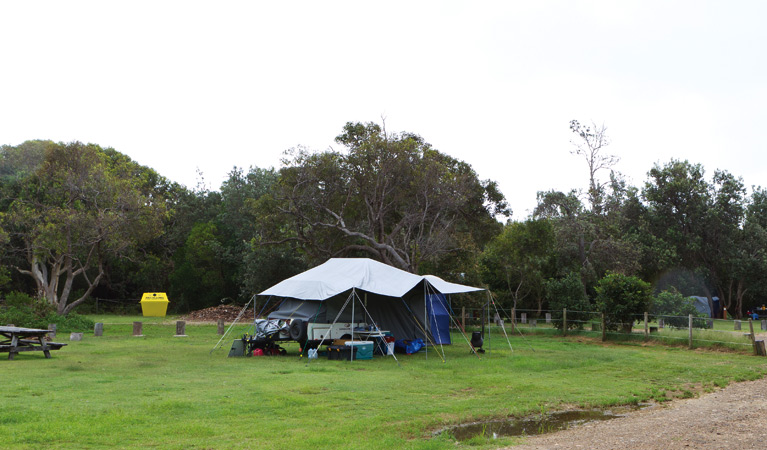 Illaroo campground - Accommodation Gold Coast