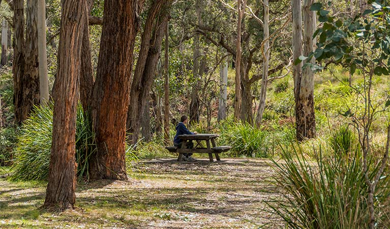Koreelah Creek campground - Accommodation Gold Coast