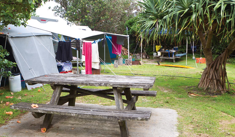 Sandon River campground - Accommodation Gold Coast