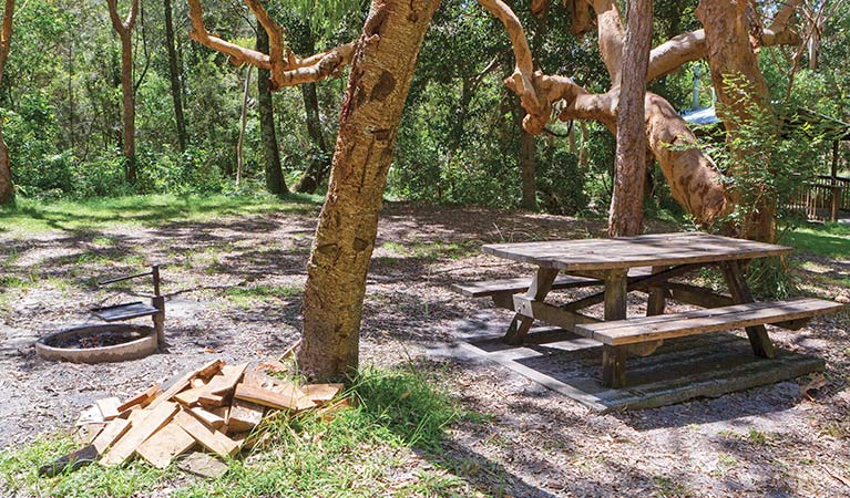 Station Creek campground - Accommodation Gold Coast