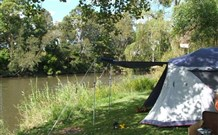 Williams River Holiday Park - Accommodation Gold Coast