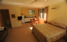 Ned's Bed Horse and Dog-Otel - Clybucca - Accommodation Gold Coast
