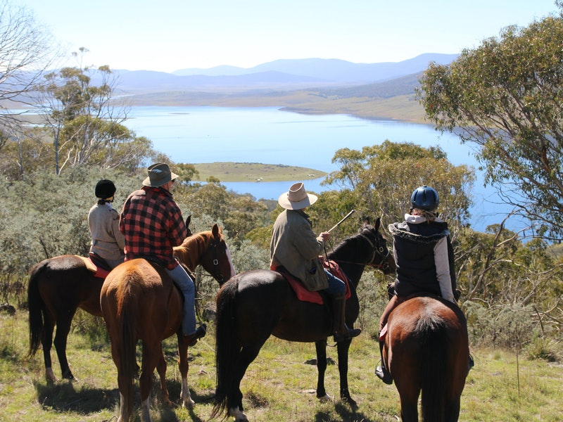 Reynella Homestead and Horseback Rides - Accommodation Gold Coast