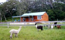 Moorallie Cottage Farm Stay - Accommodation Gold Coast