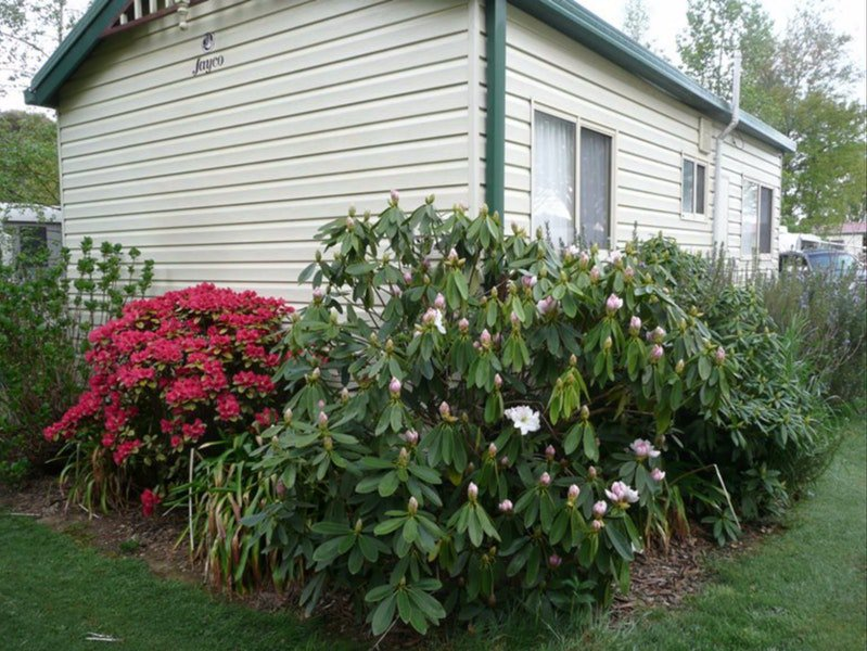 Jenolan Caravan Park - Accommodation Gold Coast