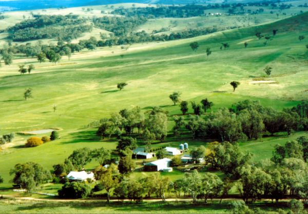 Daisyburn Homestead - Accommodation Gold Coast