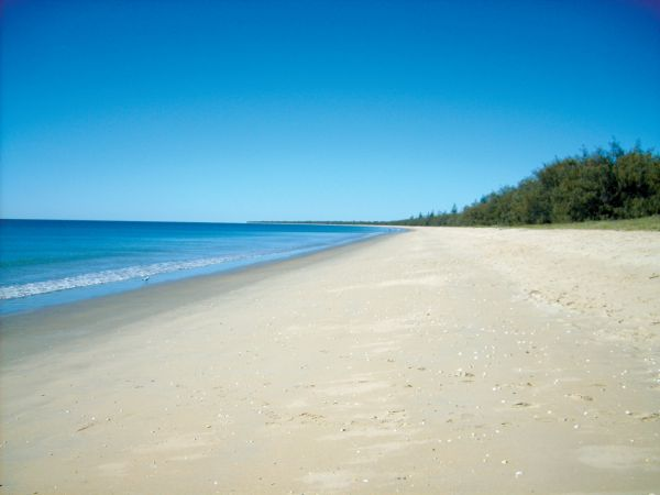 Woodgate Beach Tourist Park - Accommodation Gold Coast