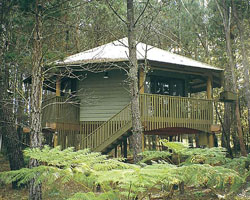 Possums Hideaway - Accommodation Gold Coast