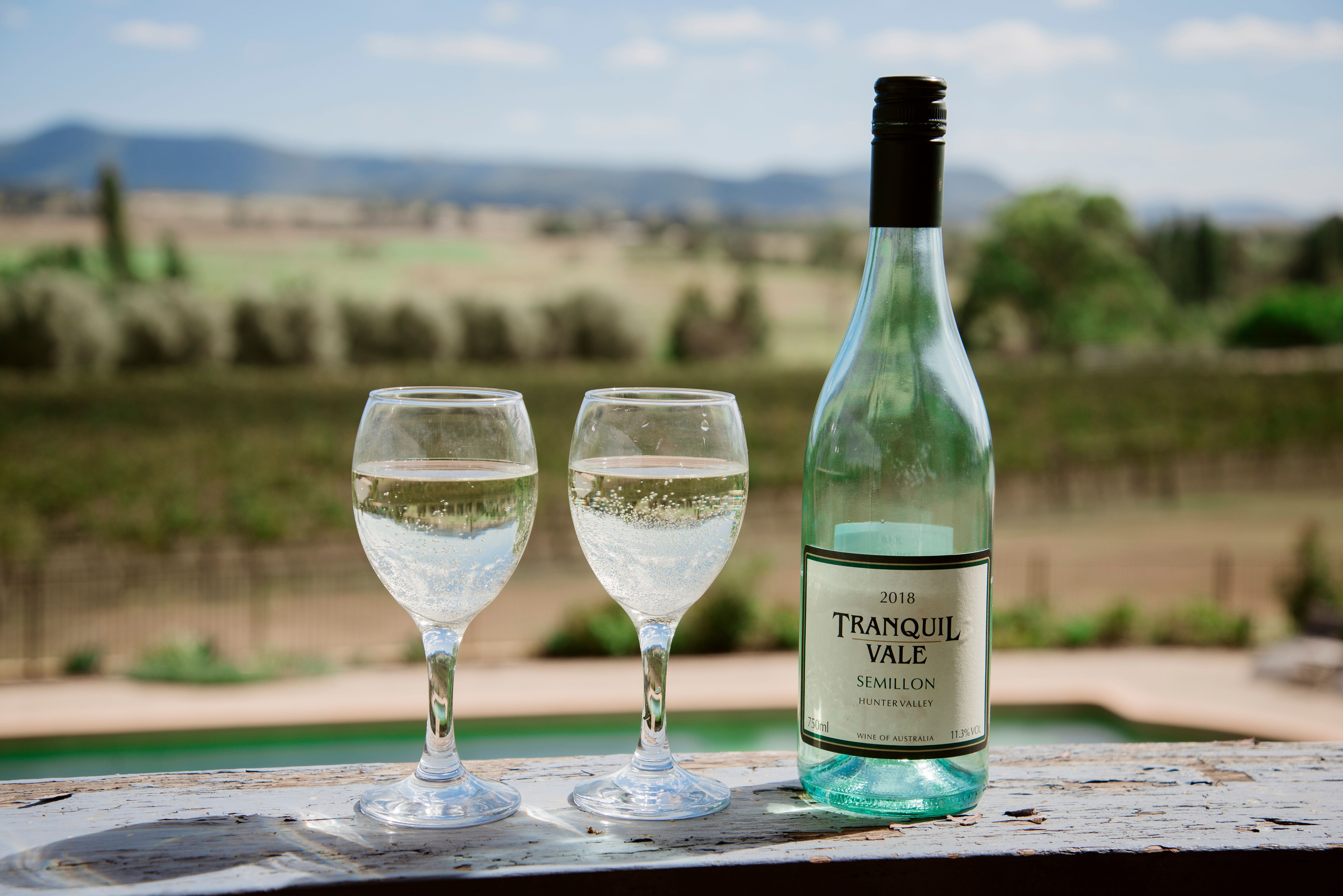 Tranquil Vale Vineyard - Accommodation Gold Coast