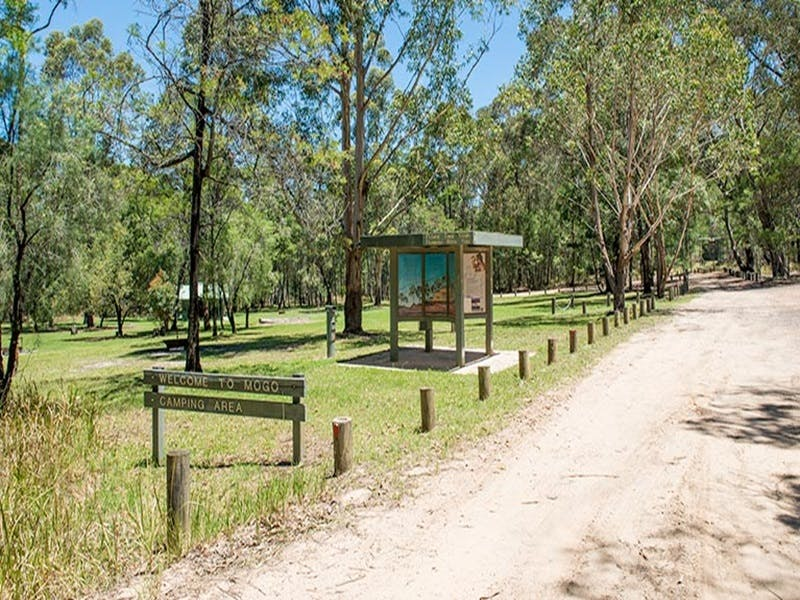 Mogo campground - Accommodation Gold Coast