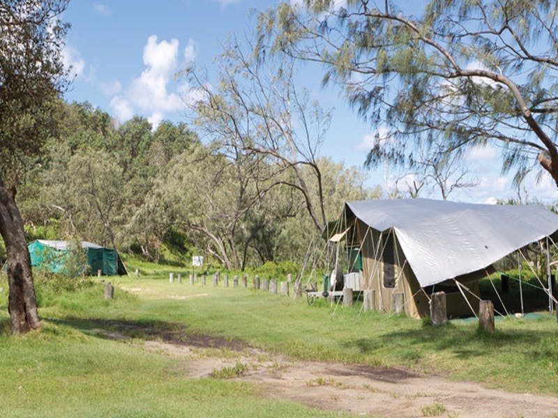 Pebbly Beach campground - Yuraygir National Park - Accommodation Gold Coast