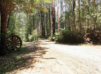 Hill n Dale Farm Cottages - Accommodation Gold Coast