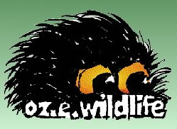OZe Wildlife - Accommodation Gold Coast