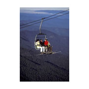 Scenic Chairlift Ride - Accommodation Gold Coast