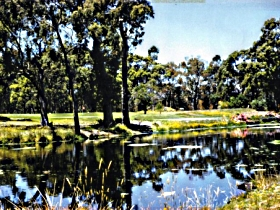 Smithton Country Club - Accommodation Gold Coast