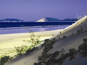 Cooloola Great Sandy National Park - Accommodation Gold Coast