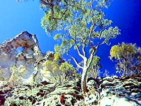 Mount Moffatt Section - Carnarvon National Park - Accommodation Gold Coast