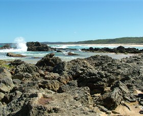 Coastal Walks - Bermagui - Accommodation Gold Coast