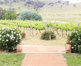 Brindabella Hills Winery - Accommodation Gold Coast