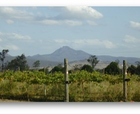 Ironbark Ridge Vineyard - Accommodation Gold Coast