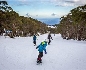 Mt Baw Baw Alpine Resort - Accommodation Gold Coast