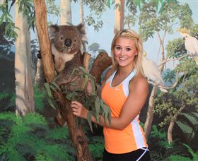 Maru Koala and Animal Park - Accommodation Gold Coast