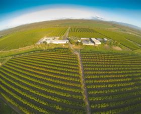 Golden Drop Winery - Accommodation Gold Coast