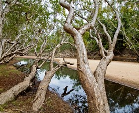 Oyala Thumotang National Park CYPAL - Accommodation Gold Coast