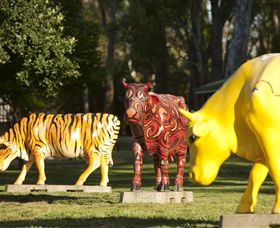 Greater Shepparton's Moooving Art - Accommodation Gold Coast