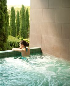 The Mineral Spa - Accommodation Gold Coast
