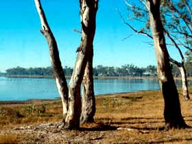 Lake Broadwater Conservation Park - Accommodation Gold Coast