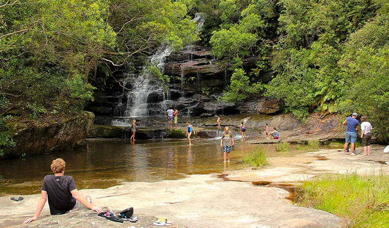Somersby Falls picnic area - Accommodation Gold Coast