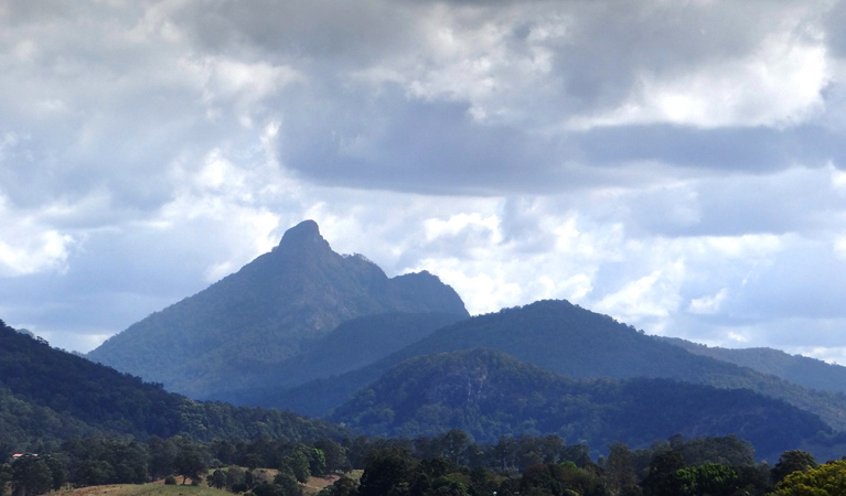 Wollumbin National Park - Accommodation Gold Coast