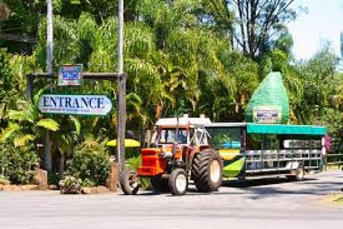 Tropical Fruit World with Wildlife Boat Cruise Mini Train Ride from Gold Coast - Accommodation Gold Coast