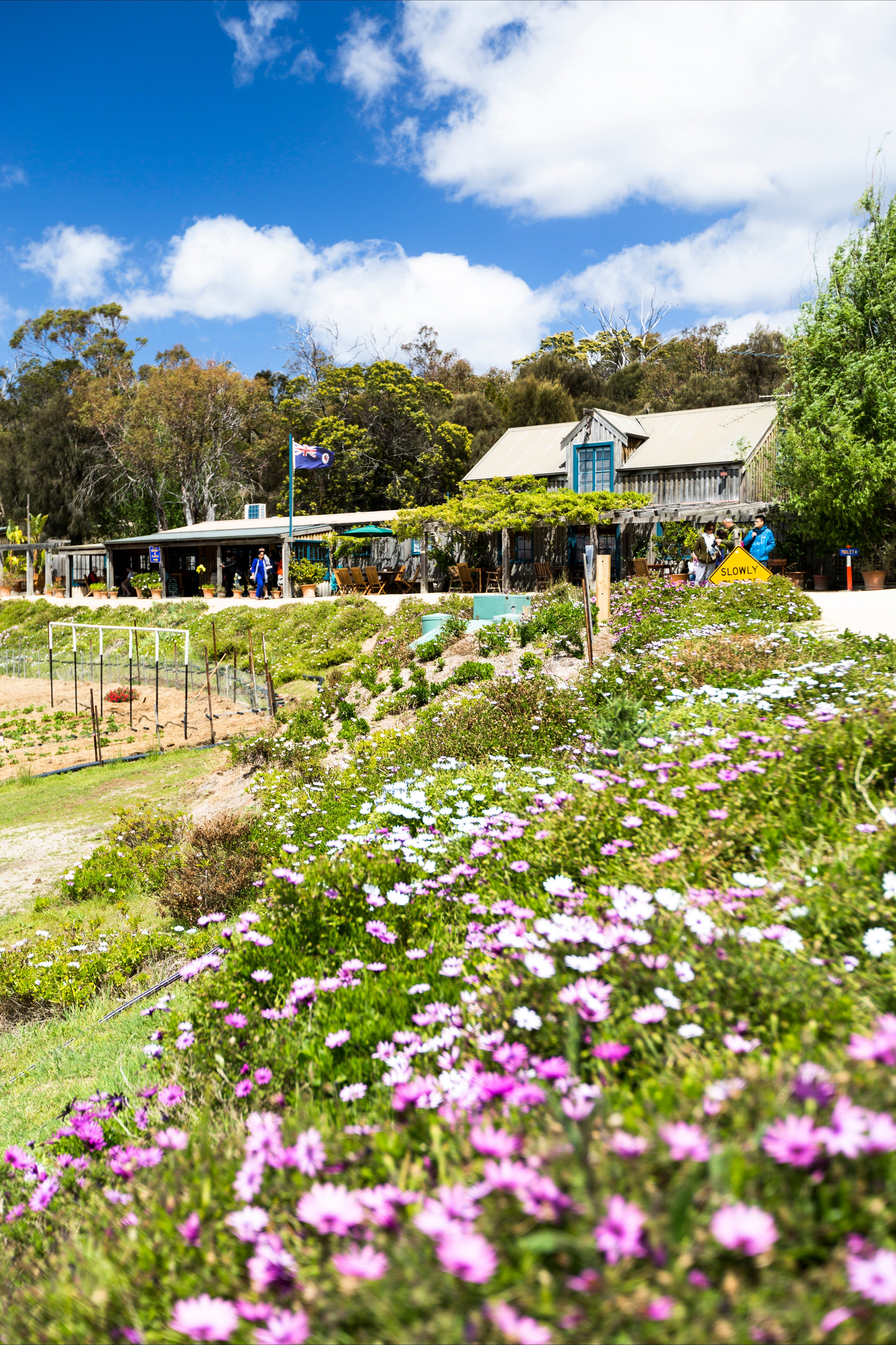 Kate's Berry Farm - Accommodation Gold Coast