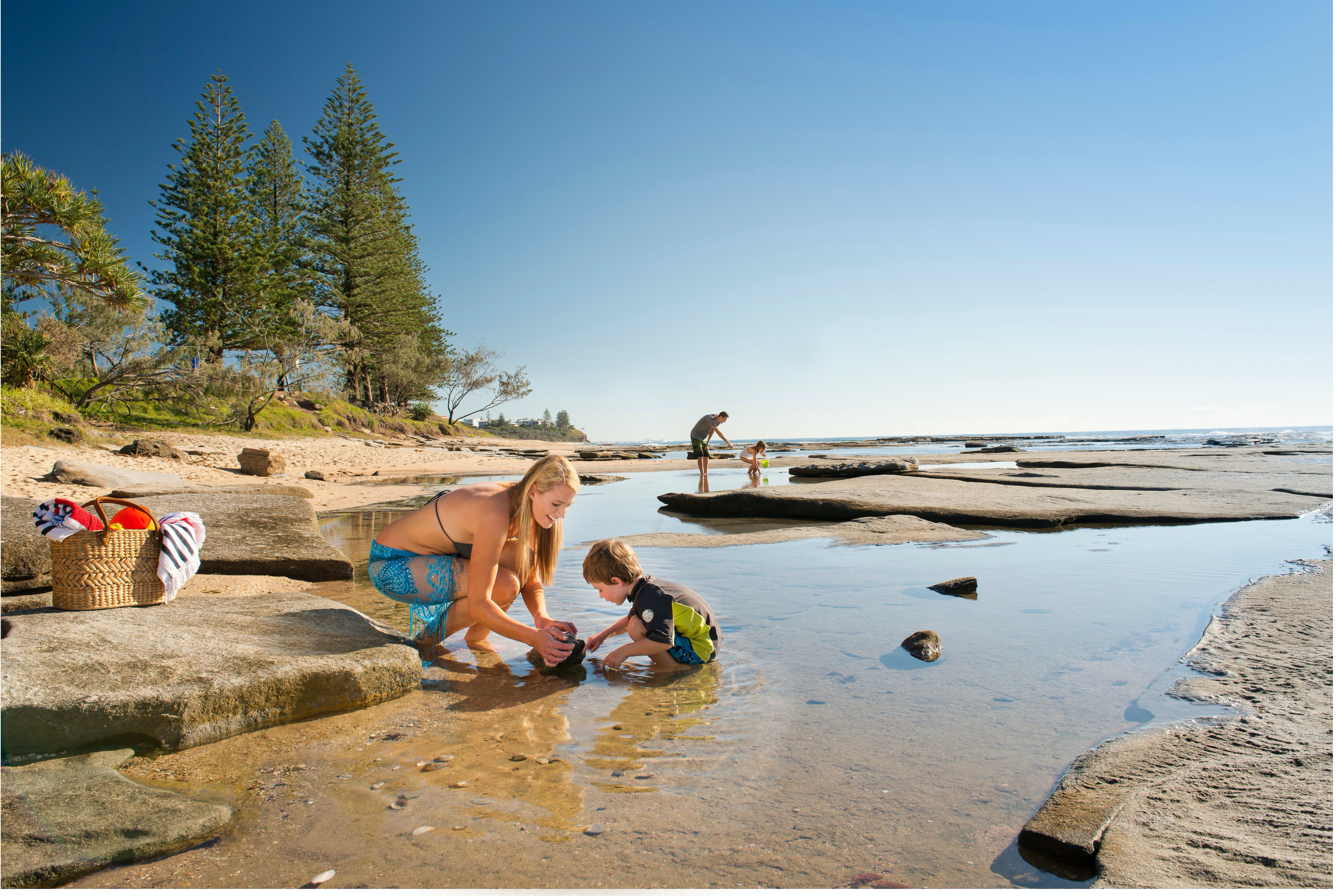 Shelly Beach - Accommodation Gold Coast