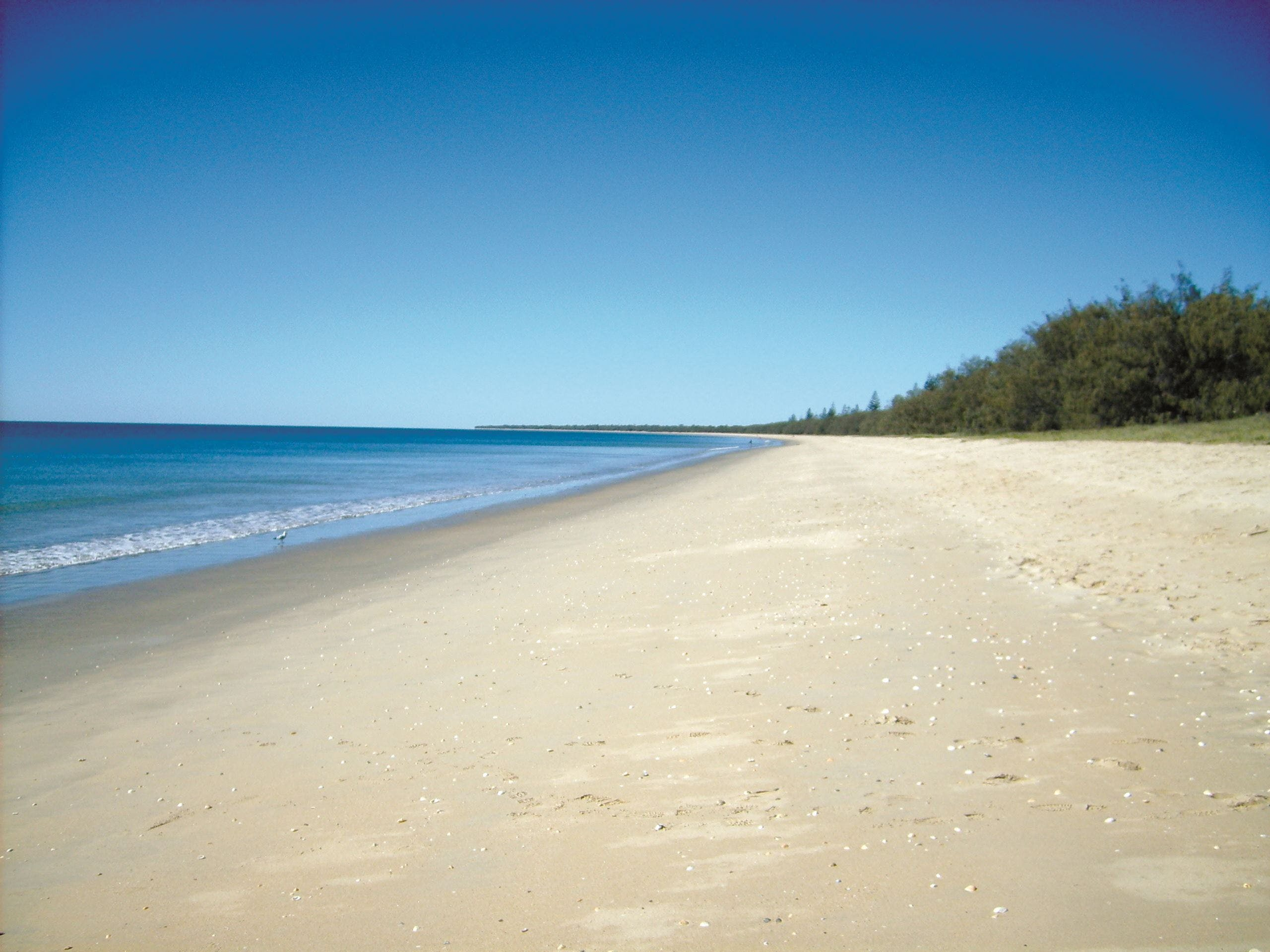 Coral Coast Pathways Woodgate Beach Section - Accommodation Gold Coast