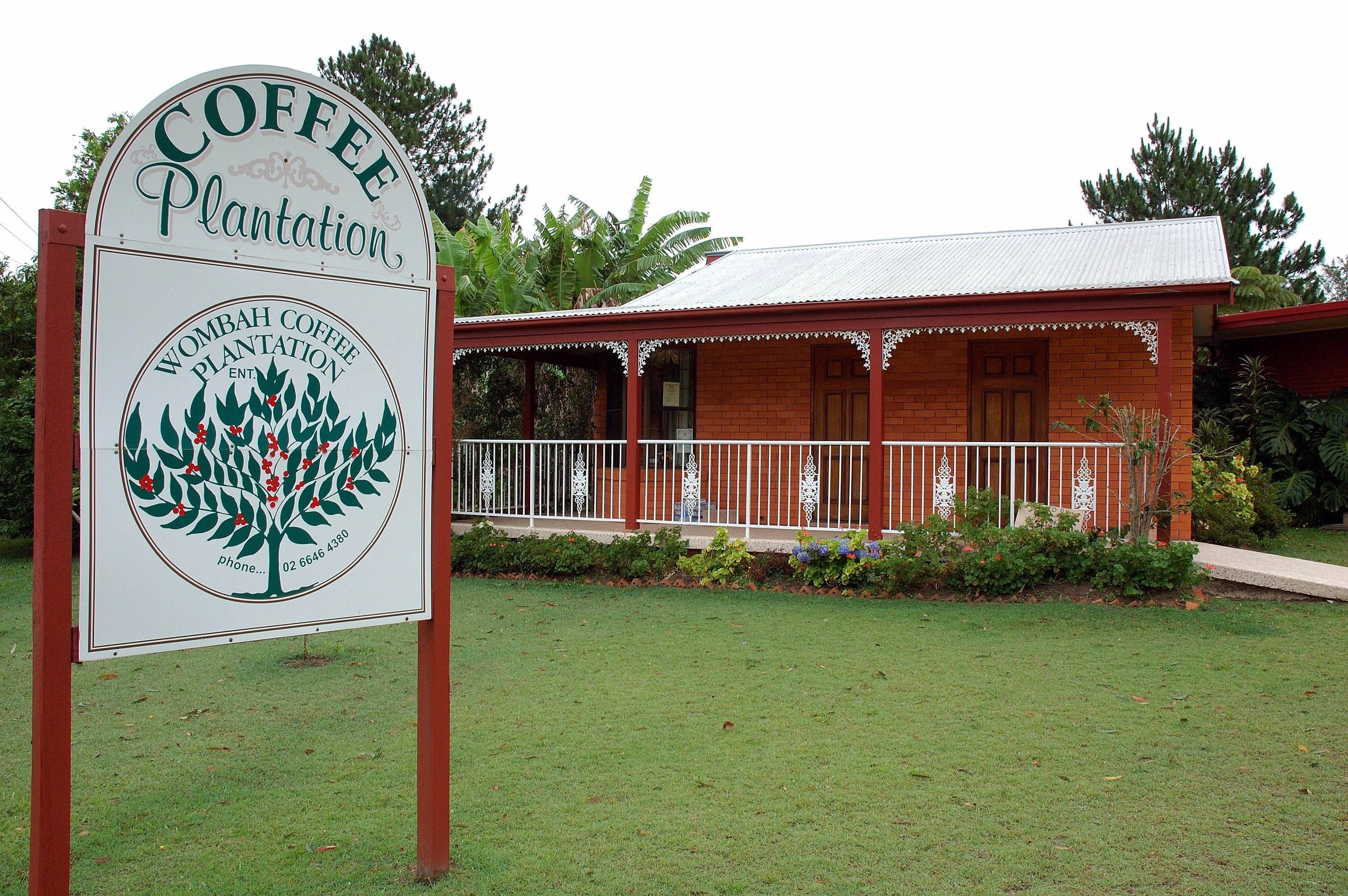 Wombah Coffee Plantation - Accommodation Gold Coast