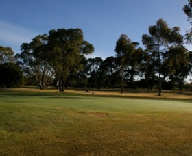 Winchelsea Golf Club - Accommodation Gold Coast